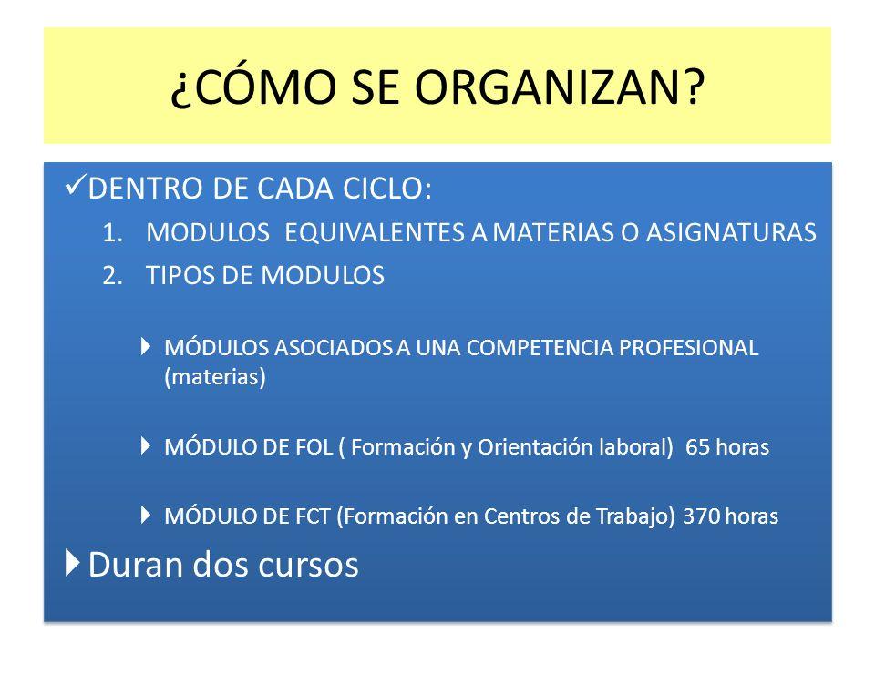 ¿CÓMO SE ORGANIZAN Duran dos cursos DENTRO DE CADA CICLO: