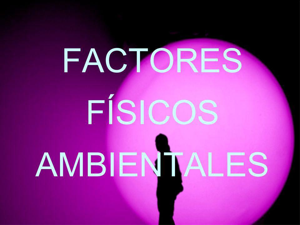 FACTORES FÍSICOS AMBIENTALES
