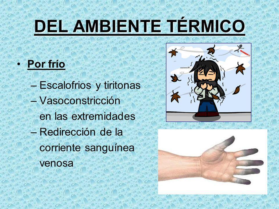 DEL AMBIENTE TÉRMICO Por frío Escalofrios y tiritonas Vasoconstricción