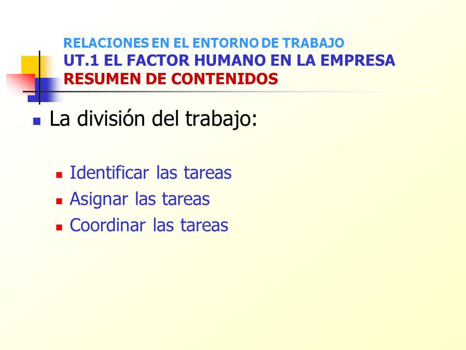 La división del trabajo: