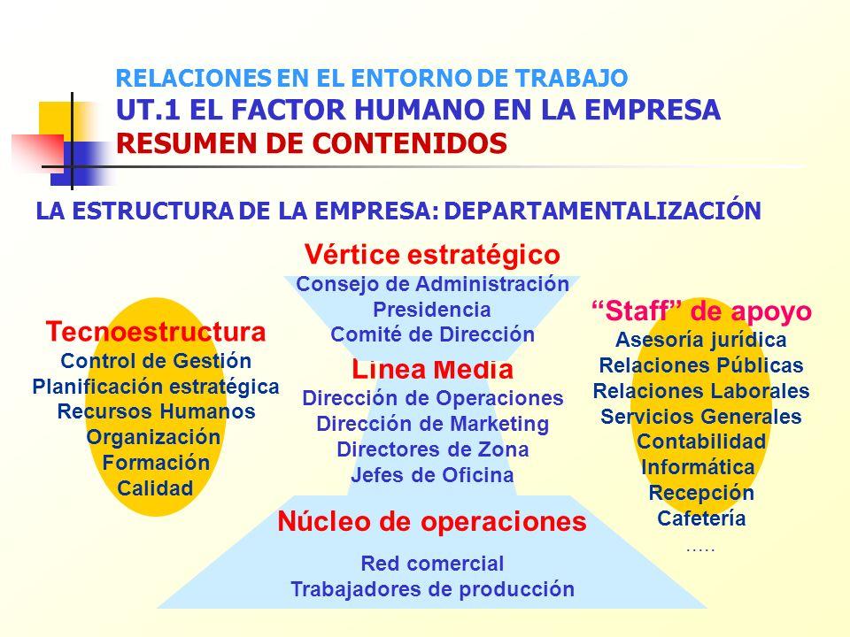 Vértice estratégico Staff de apoyo Tecnoestructura Línea Media