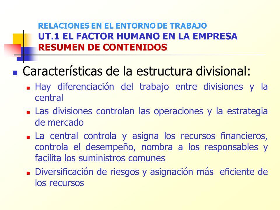 Características de la estructura divisional: