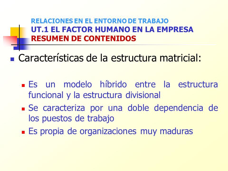 Características de la estructura matricial: