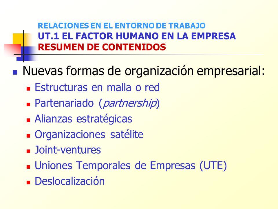 Nuevas formas de organización empresarial: