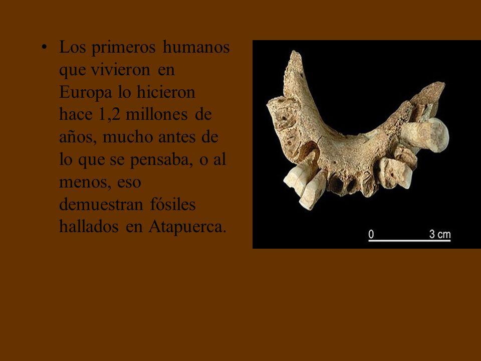 Los primeros humanos que vivieron en Europa lo hicieron hace 1,2 millones de años, mucho antes de lo que se pensaba, o al menos, eso demuestran fósiles hallados en Atapuerca.
