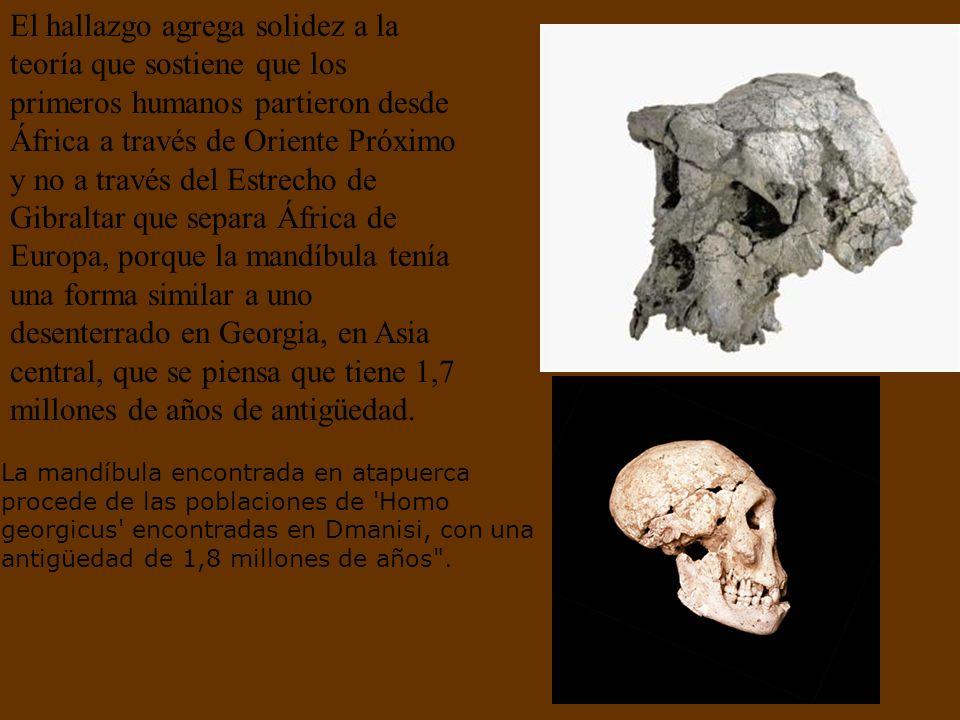 El hallazgo agrega solidez a la teoría que sostiene que los primeros humanos partieron desde África a través de Oriente Próximo y no a través del Estrecho de Gibraltar que separa África de Europa, porque la mandíbula tenía una forma similar a uno desenterrado en Georgia, en Asia central, que se piensa que tiene 1,7 millones de años de antigüedad.