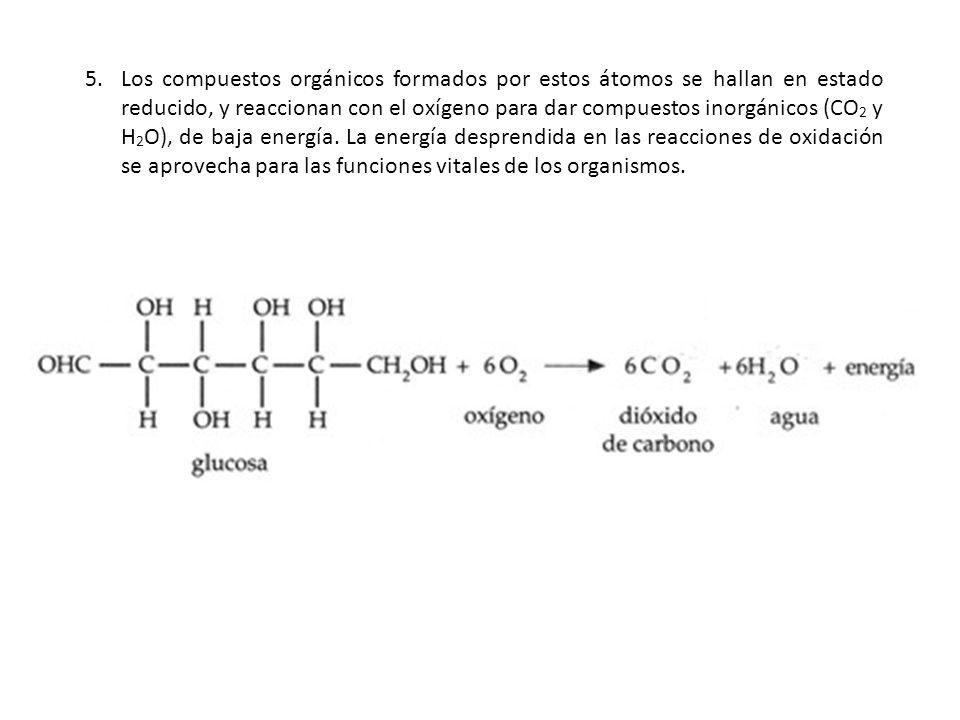 Los compuestos orgánicos formados por estos átomos se hallan en estado reducido, y reaccionan con el oxígeno para dar compuestos inorgánicos (CO2 y H2O), de baja energía.