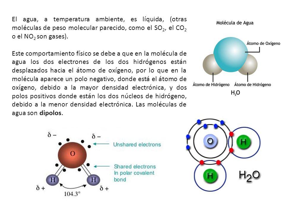 El agua, a temperatura ambiente, es líquida, (otras moléculas de peso molecular parecido, como el SO2, el CO2 o el NO2 son gases).