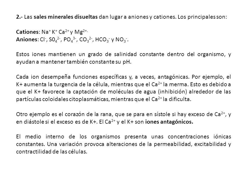 2. - Las sales minerales disueltas dan lugar a aniones y cationes