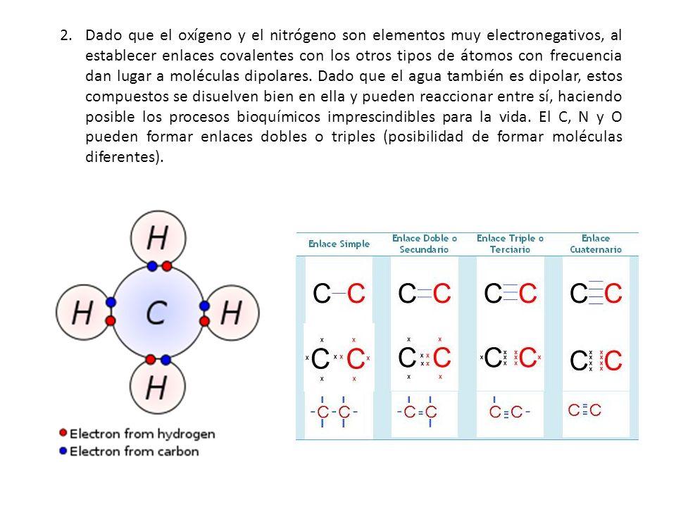 Dado que el oxígeno y el nitrógeno son elementos muy electronegativos, al establecer enlaces covalentes con los otros tipos de átomos con frecuencia dan lugar a moléculas dipolares.