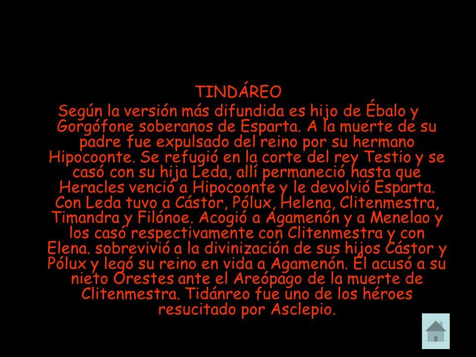 TINDÁREO