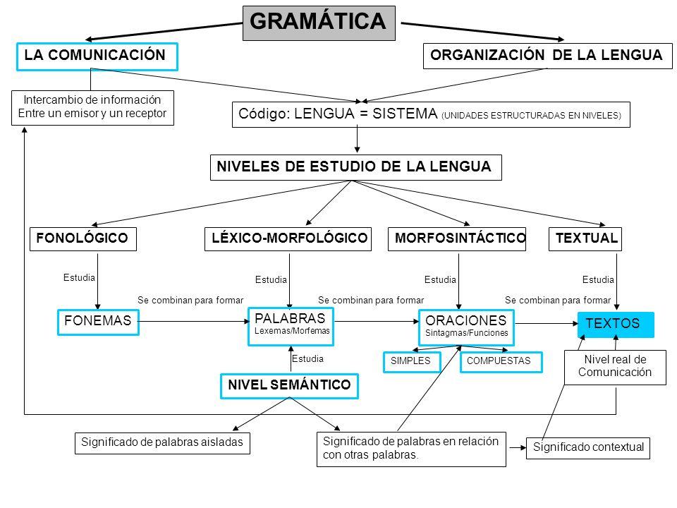 GRAMÁTICA LA COMUNICACIÓN ORGANIZACIÓN DE LA LENGUA