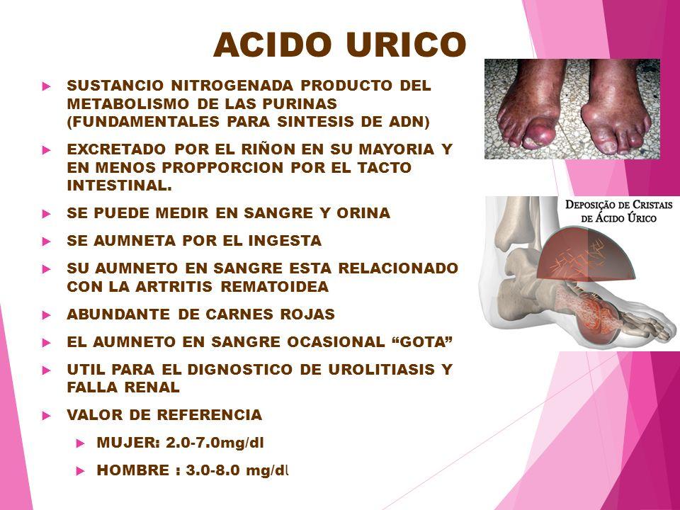 dietas para acido urico y colesterol acido urico que alimentos puedo comer acido urico alto por medicamento
