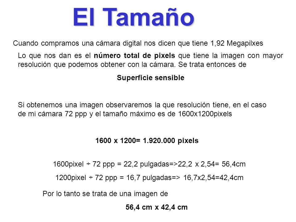 El Tamaño Cuando compramos una cámara digital nos dicen que tiene 1,92 Megapilxes.