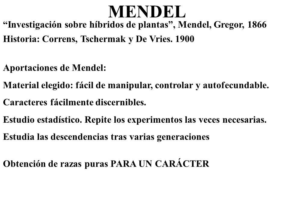 MENDEL Investigación sobre híbridos de plantas , Mendel, Gregor, 1866