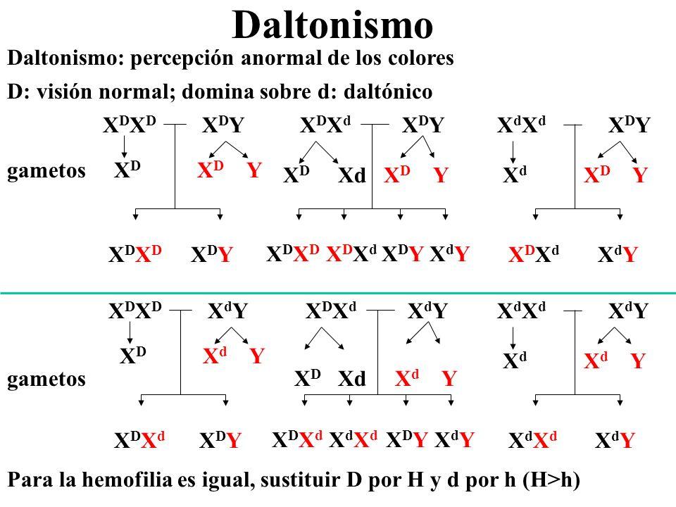 Daltonismo Daltonismo: percepción anormal de los colores