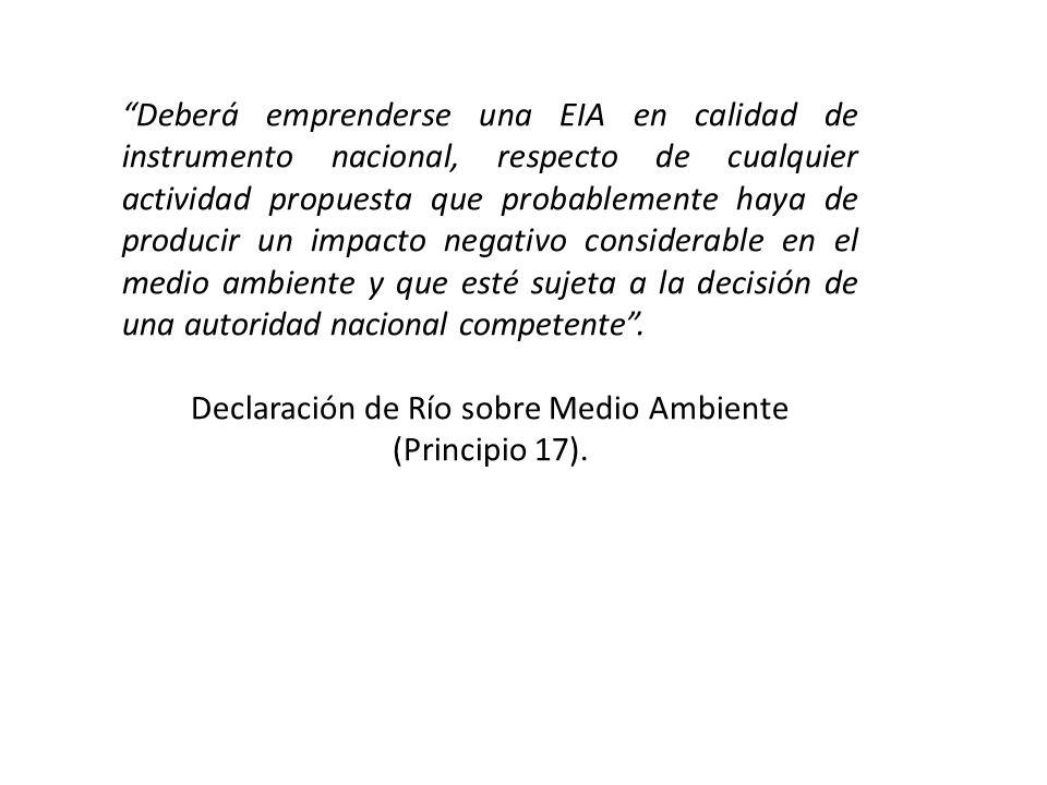 Declaración de Río sobre Medio Ambiente (Principio 17).