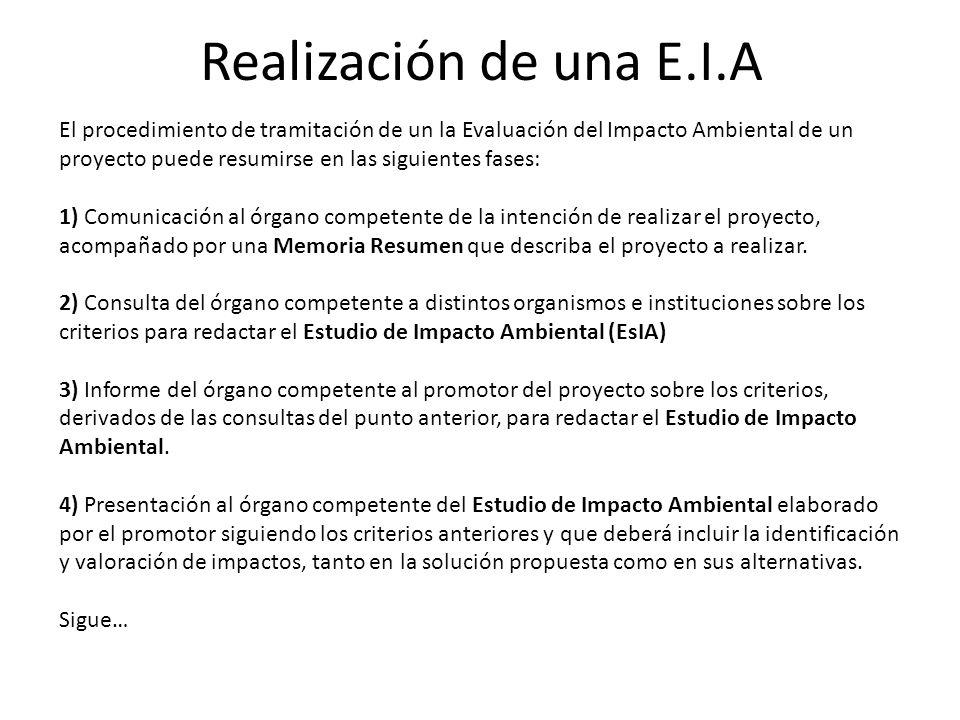 Realización de una E.I.A