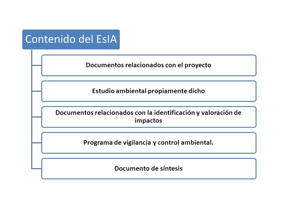 Documentos relacionados con el proyecto