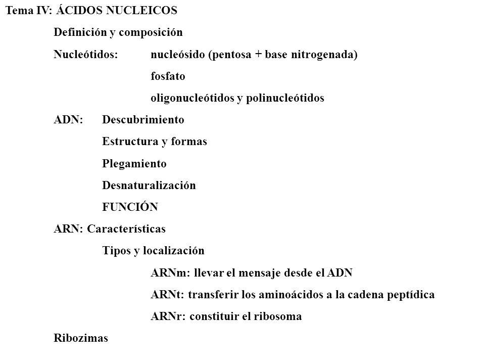 Tema IV: ÁCIDOS NUCLEICOS