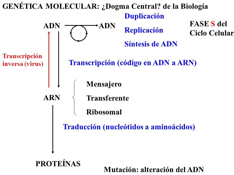 GENÉTICA MOLECULAR: ¿Dogma Central de la Biología