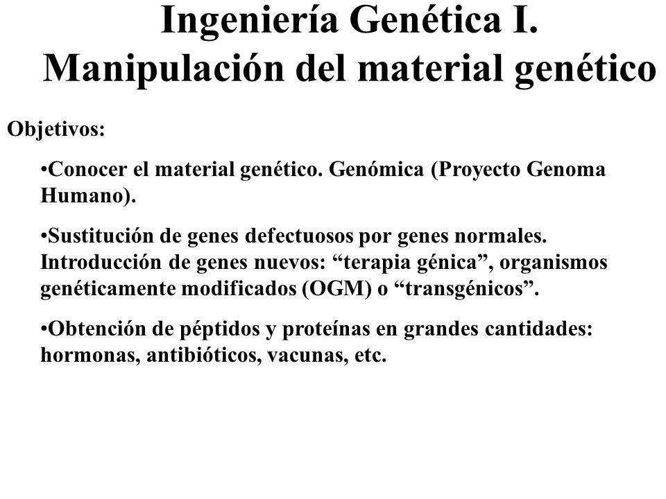 Ingeniería Genética I. Manipulación del material genético