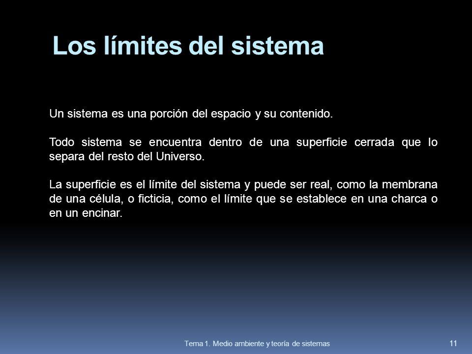 Los límites del sistema