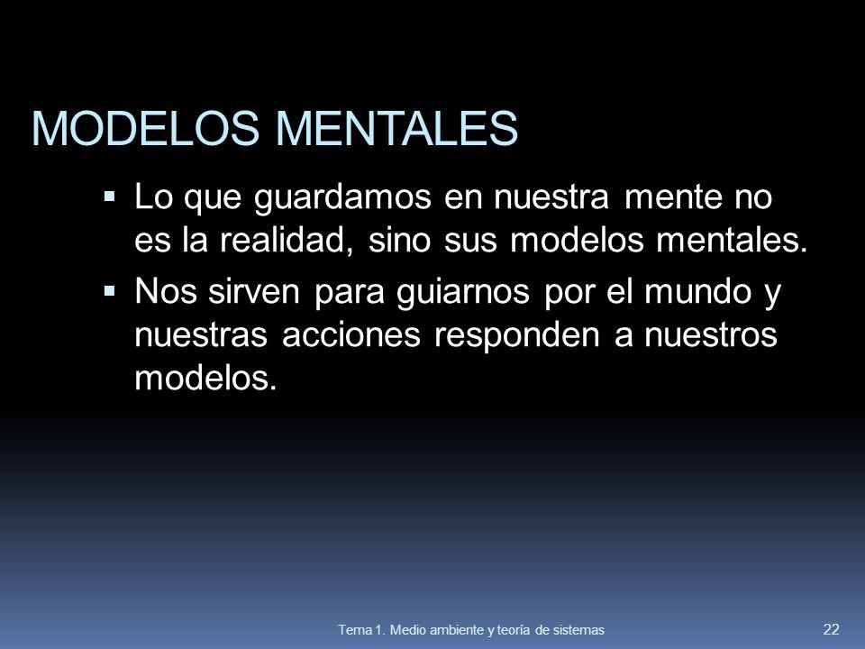 MODELOS MENTALES Lo que guardamos en nuestra mente no es la realidad, sino sus modelos mentales.