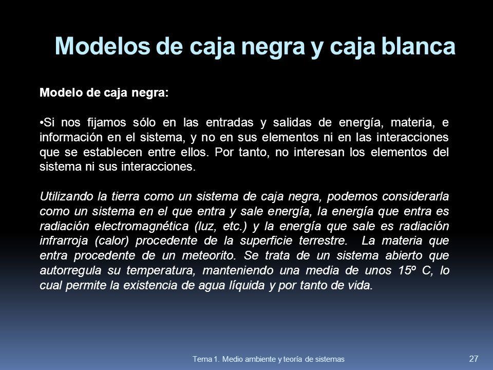 Modelos de caja negra y caja blanca