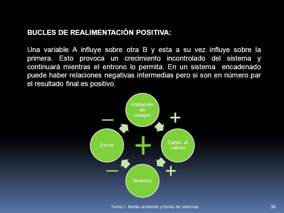 BUCLES DE REALIMENTACIÓN POSITIVA: