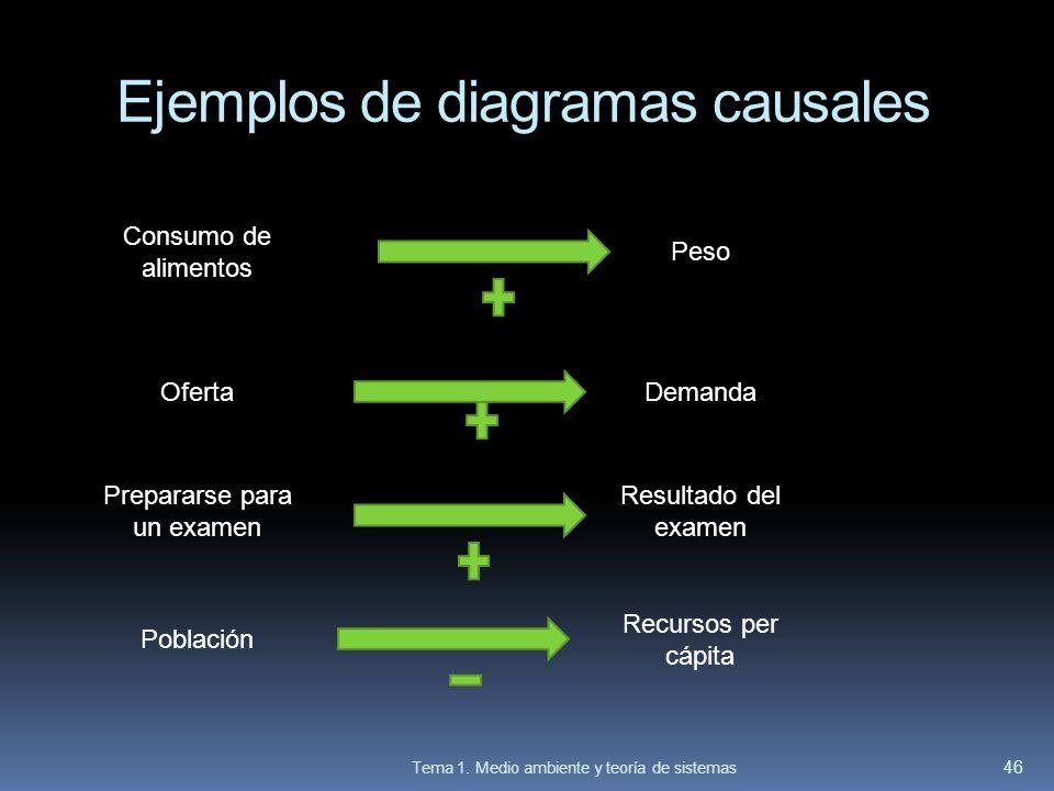 Ejemplos de diagramas causales