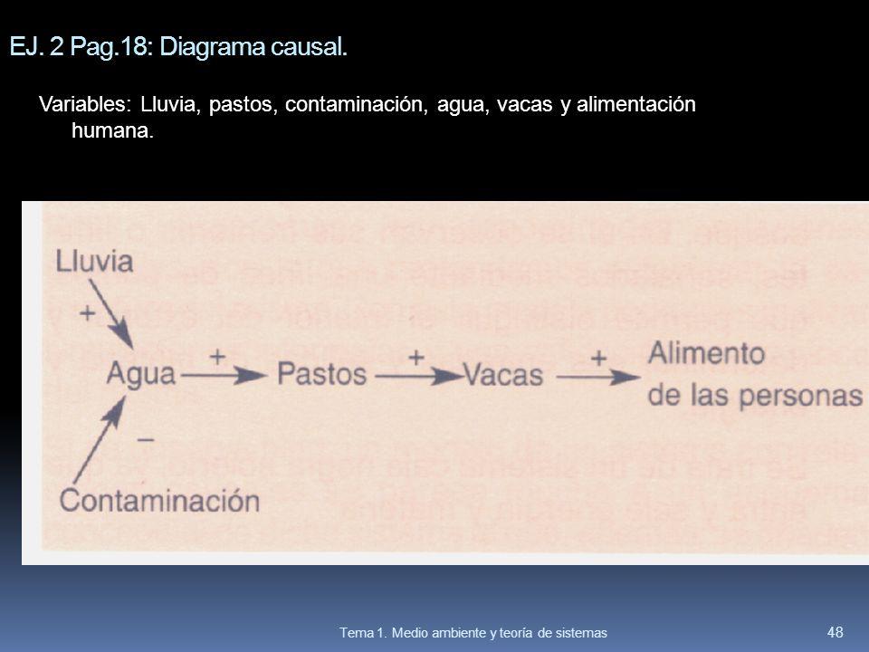 EJ. 2 Pag.18: Diagrama causal.