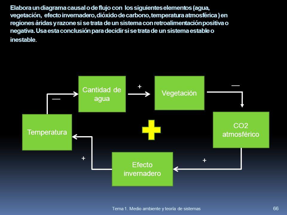 __ Cantidad de agua + Vegetación __ CO2 atmosférico Temperatura + +