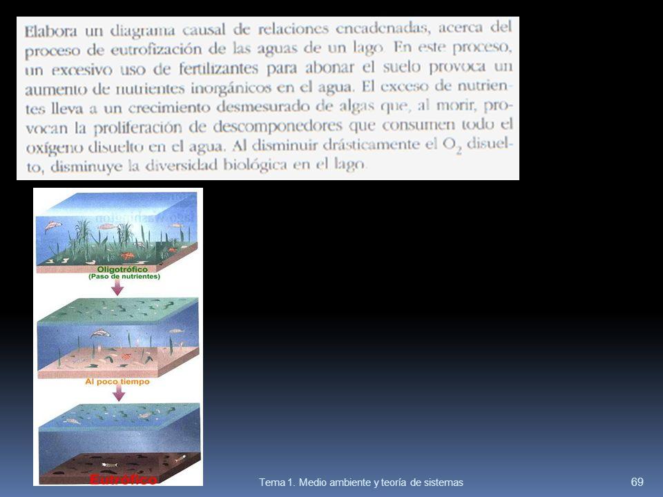 Tema 1. Medio ambiente y teoría de sistemas