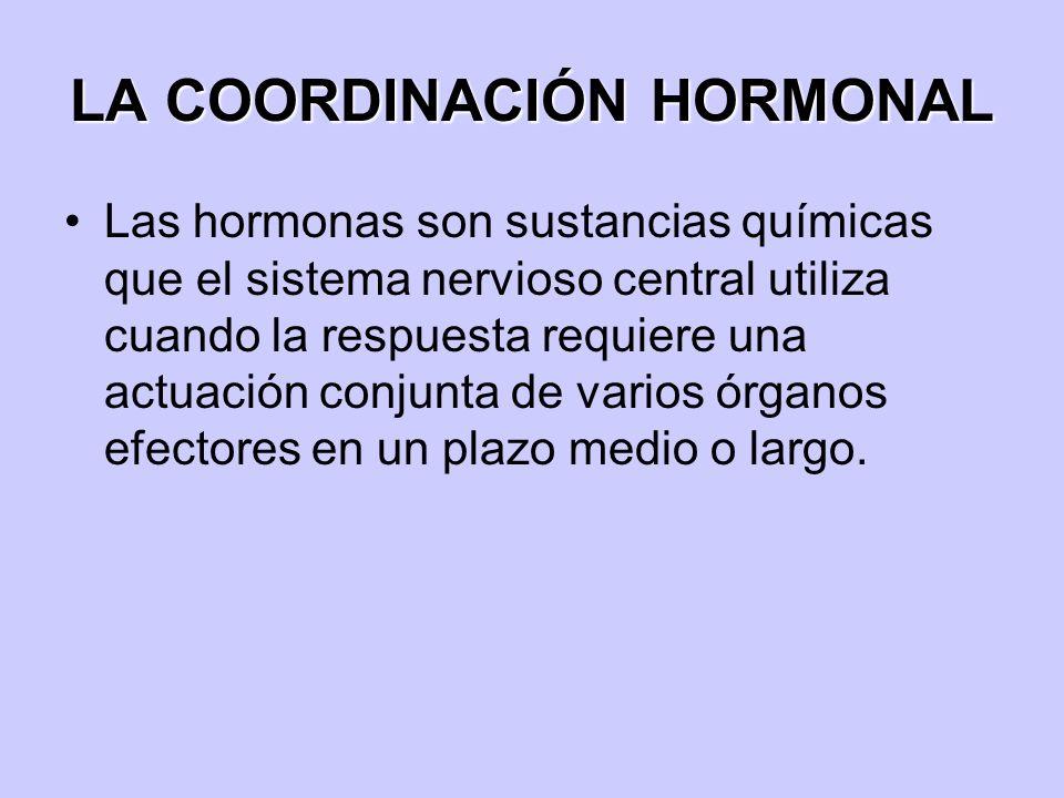 LA COORDINACIÓN HORMONAL