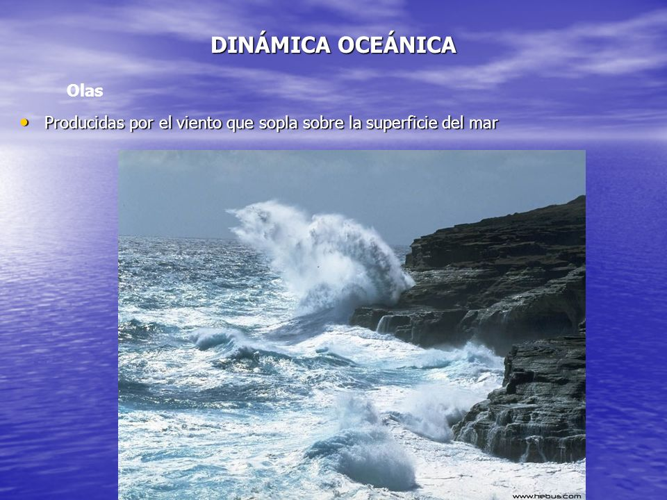 DINÁMICA OCEÁNICA Olas