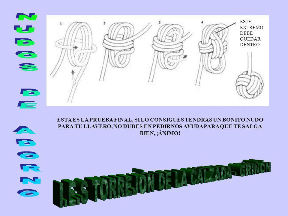 I.E.S TORREJÓN DE LA CALZADA - GRIÑÓN