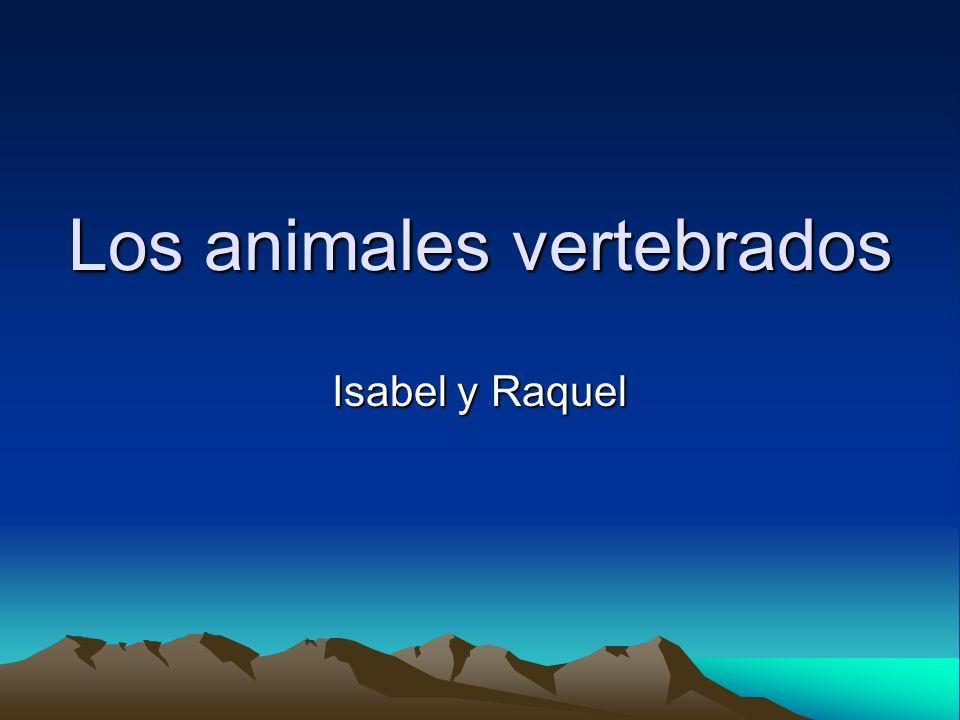 Los animales vertebrados