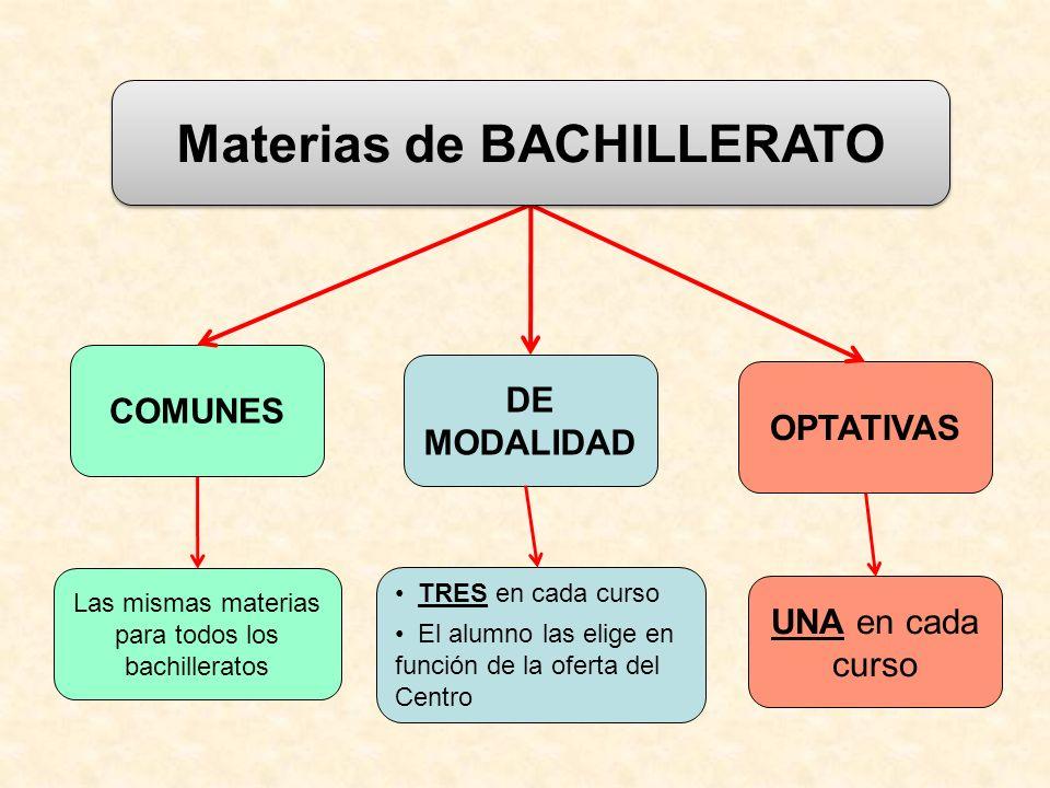 Materias de BACHILLERATO