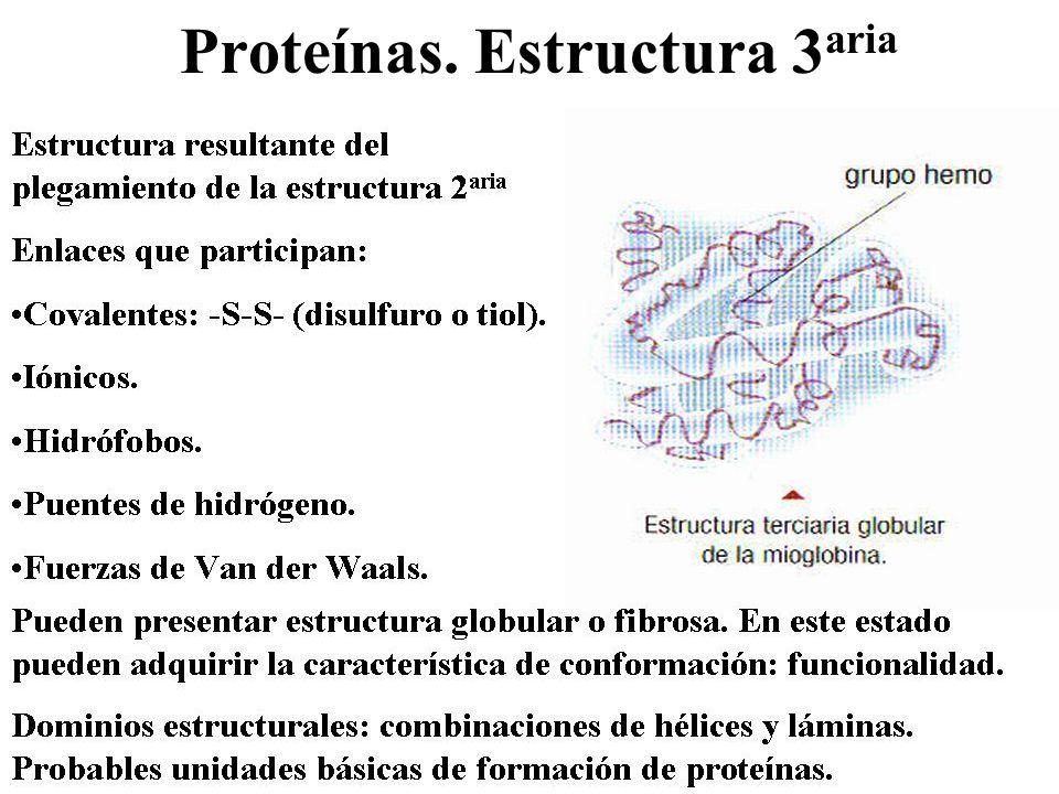 Proteínas. Estructura 3aria