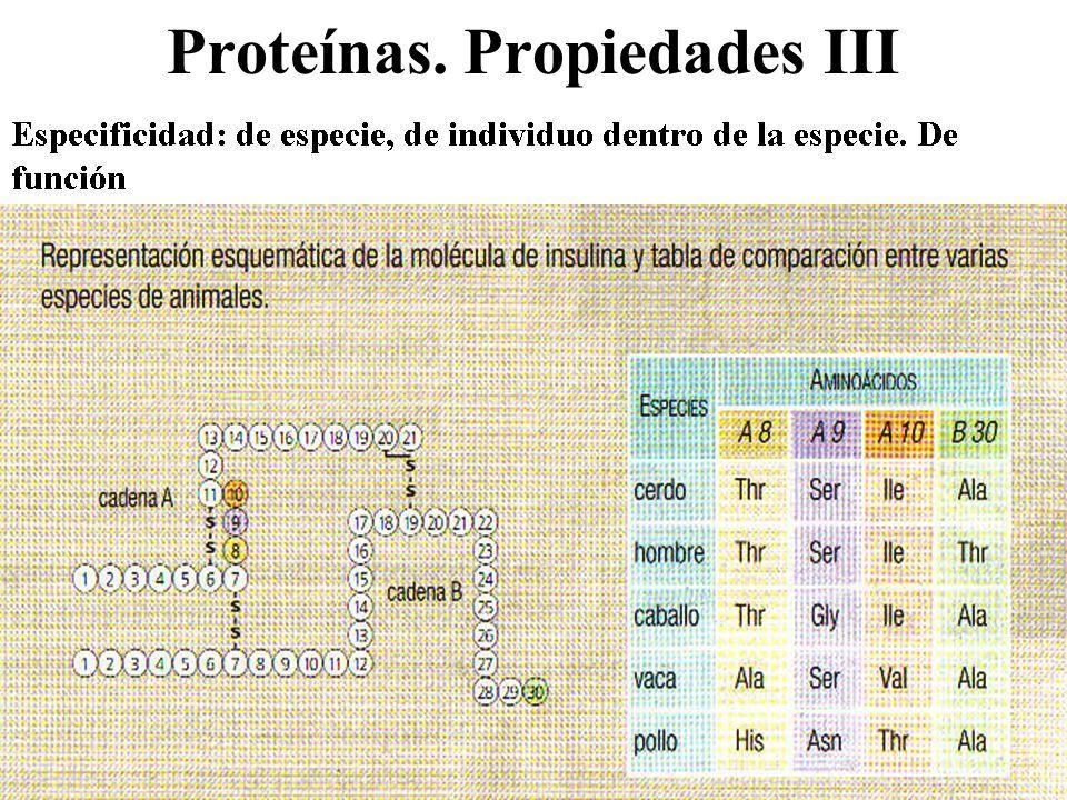 Proteínas. Propiedades III