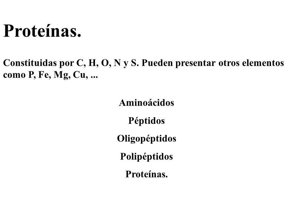 Proteínas. Constituidas por C, H, O, N y S. Pueden presentar otros elementos como P, Fe, Mg, Cu, ...