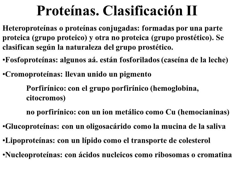 Proteínas. Clasificación II