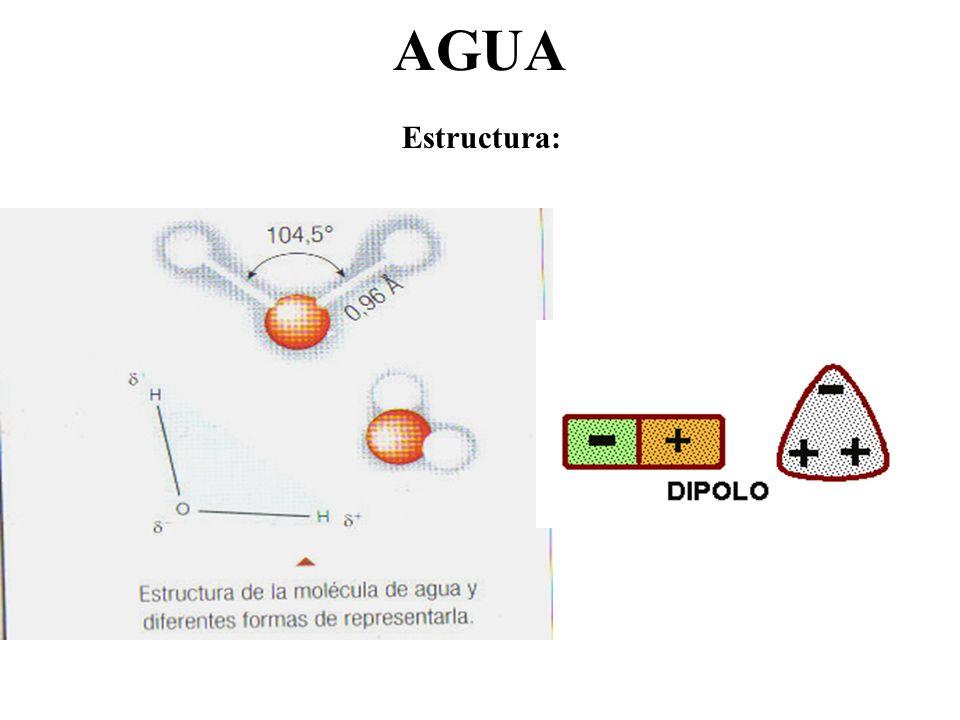 AGUA Estructura: