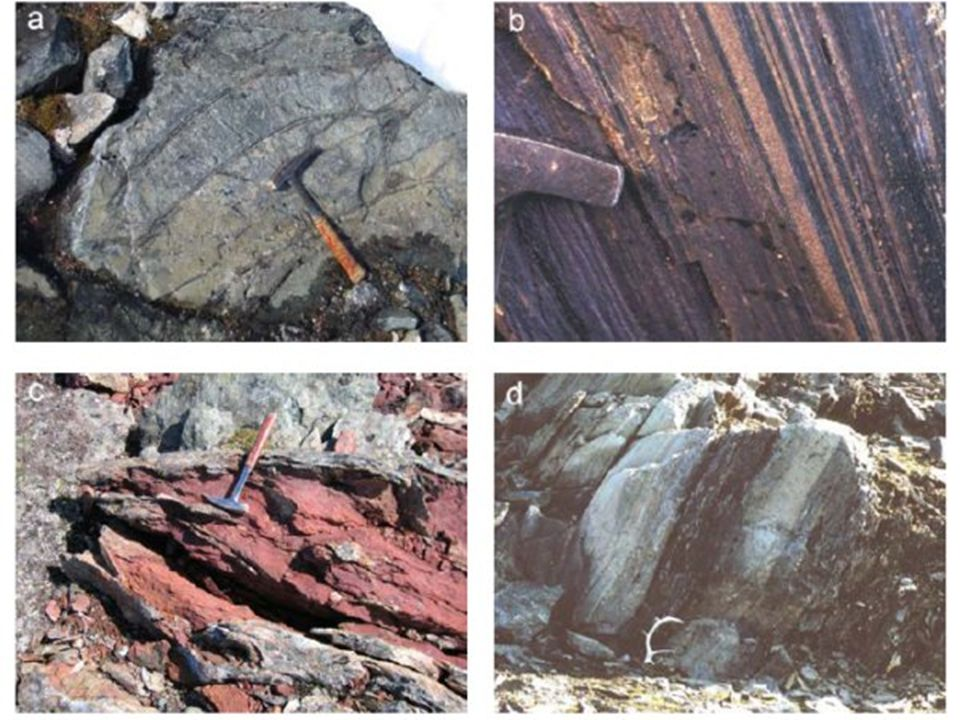 En Isua (Groenlandia) se han encontrado rocas que presentan C12 de 3850 millones de años, por lo que se puede deducir que los seres vivos más antiguos de La Tierra tienen una antigüedad de 4000 millones de años