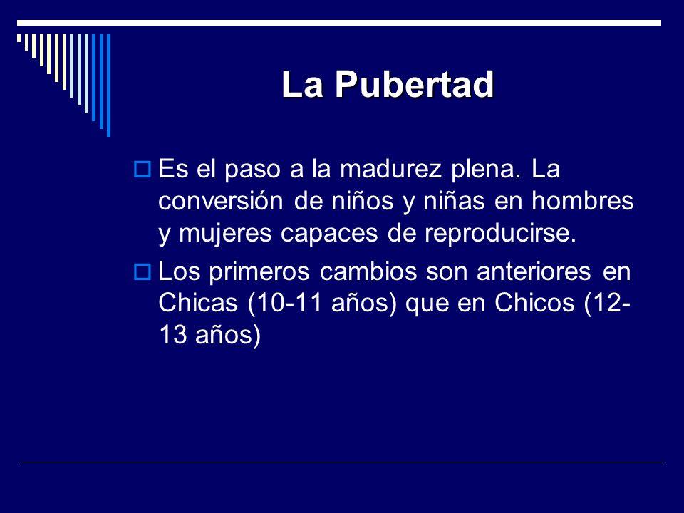 La Pubertad Es el paso a la madurez plena. La conversión de niños y niñas en hombres y mujeres capaces de reproducirse.