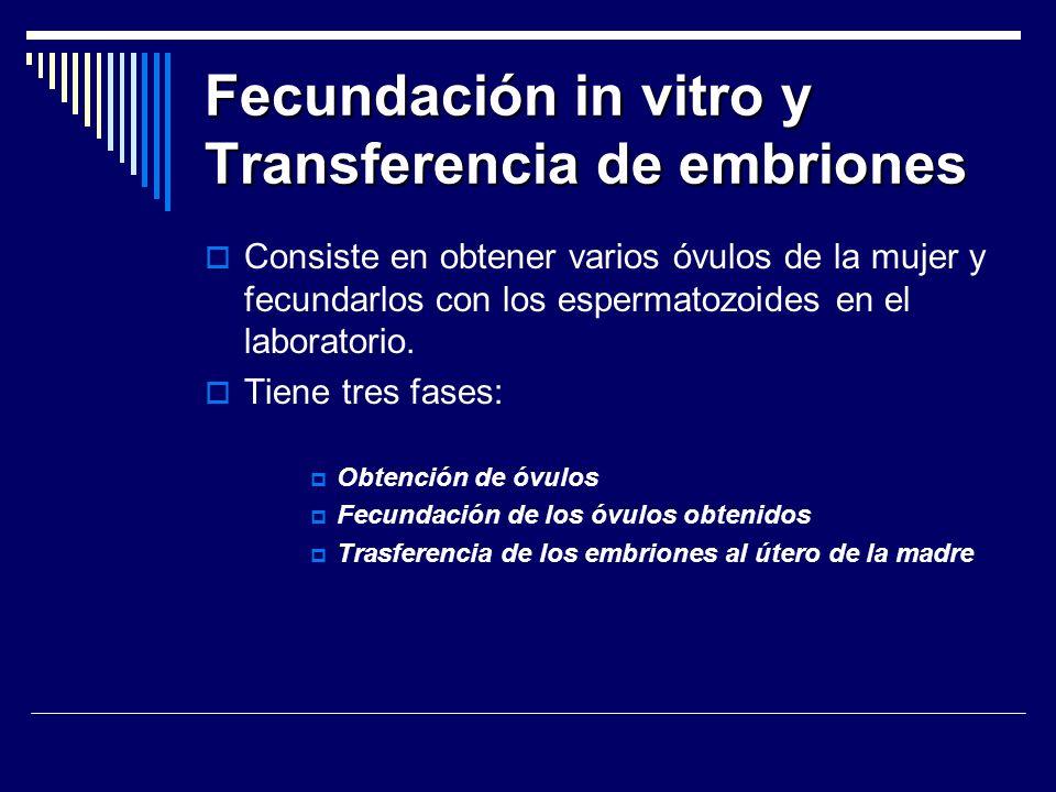 Fecundación in vitro y Transferencia de embriones