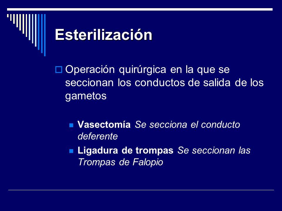 Esterilización Operación quirúrgica en la que se seccionan los conductos de salida de los gametos. Vasectomía Se secciona el conducto deferente.