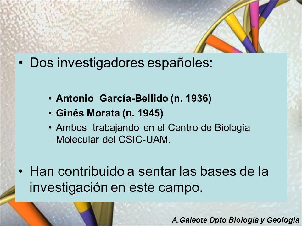Dos investigadores españoles: