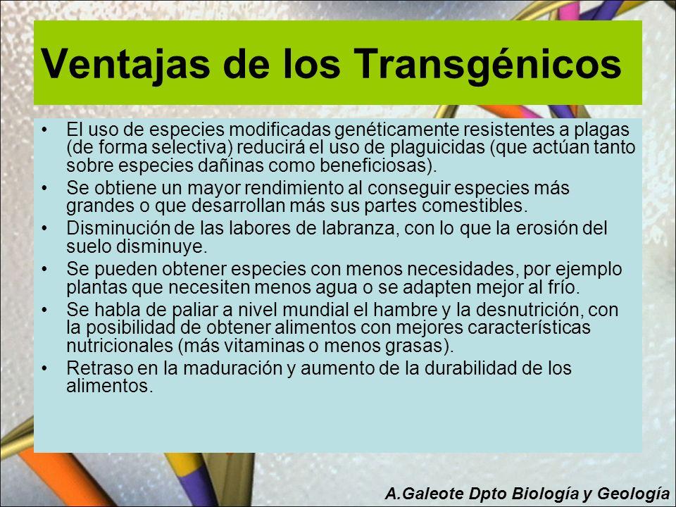 Ventajas de los Transgénicos
